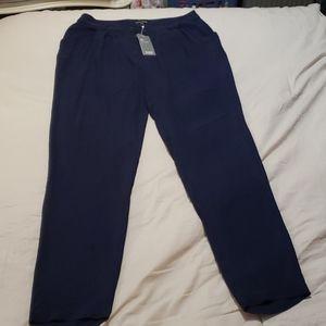 Eileen Fisher navy blue silk  pants